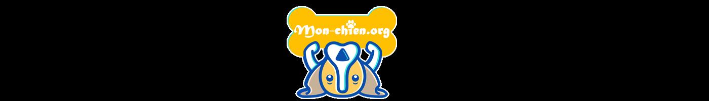Le blog de ceux qui aiment les animaux de compagnie !
